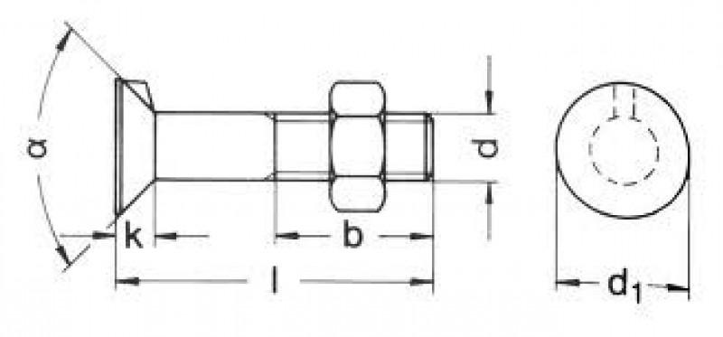 Śruba noskowa DIN604 schemat